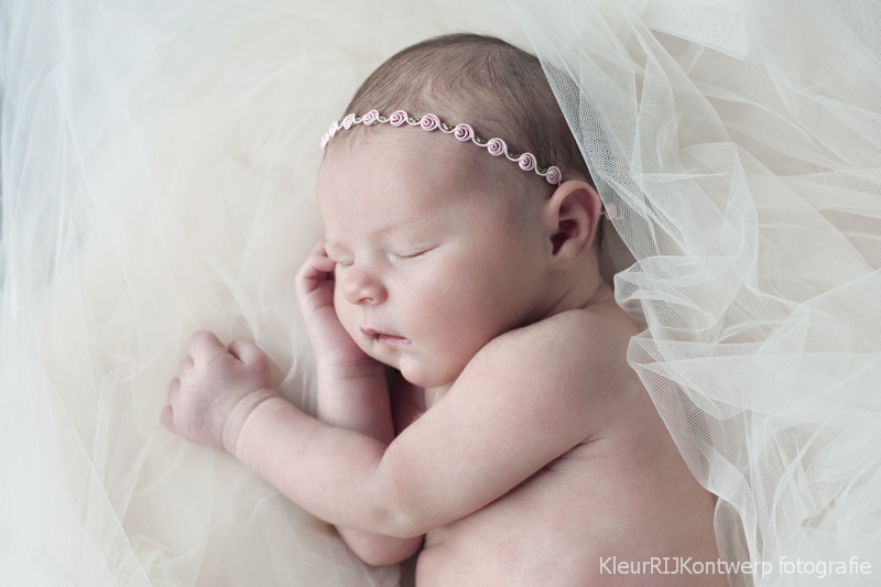 newborn fotografie amstelveen