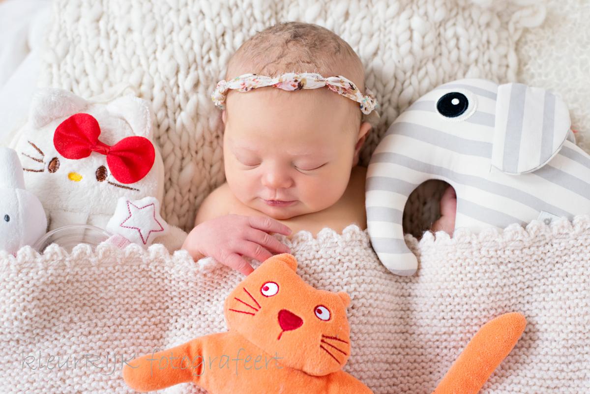 lieve newborn fotoshoot